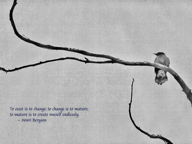 To exist is to change.. | Azaadpakistan #Quotes #Daily #Famous #Inspiration #Friends #Life #Awesome #Nature #Love #Powerful #Great #Amazing #everyday #teen #Motivational #Wisdom #Insurance #Beautiful #Emotional  #Top #life #Famous #Success #Best #funny #Positive #thoughtfull #educational #gratitiude #moving  #halloween #happiness #anniversary #birthday #movie #country #islam #one #onesses #fajr #prayer #rumi #sad #heartbreak #pain #heart #death #depression #you #suicide #poetry