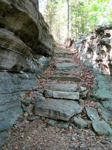 20 of the Most Scenic Mountain Bike Trails in the Eastern USA. Come And Visit Us At - http://WhatIsTheBestMountainBike.com/