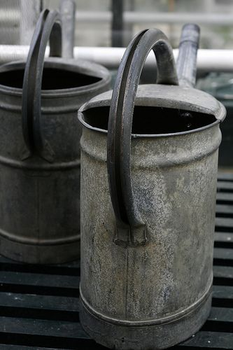 metal zinc watering cans vintage inspired design  Repinned by www.silver-and-grey.com
