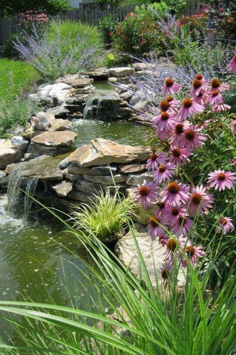 Stunning Wasser f r garten teich anlegen wasserf lle Wasserpflanzen randsteine