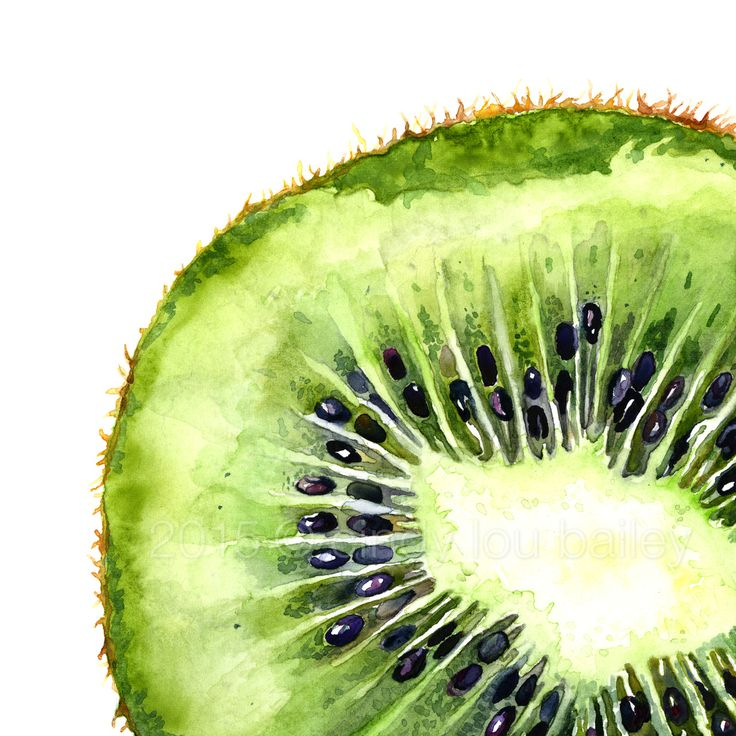 """""""Fruit Squares"""" series #2: 'Kiwi Slice' A watercolor painting of a juicy, green kiwi slice by Cindy Lou Bailey. I truly enjoyed painting the beautiful, jewel-like structure of the fleshy kiwi. SO vibrant! I used Winsor & Newton watercolors on 140 lb...."""