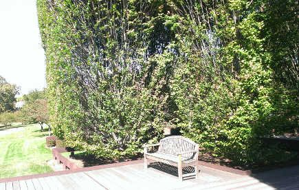 architectural museum garden - deck overlooking the Hudson River at Robert Irwin designed garden at DIA Foundation, Beacon, NY - atticmag