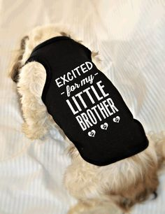Gender Reveal Dog Tank Tops. Excited for my Little Brother Dog Shirt. Small Pet Clothes. Gift for Expecting Mother.