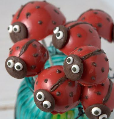 Ladybug cake pops  **Had these made for Hannah's 2nd birthday by the Dunwoody Bakery.  They looked just like this!!**