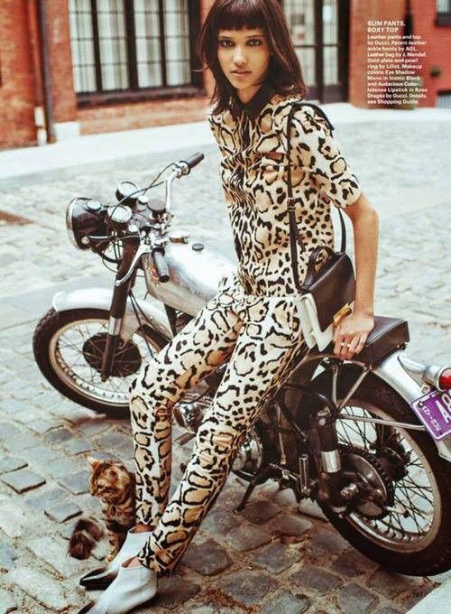 Image via We Heart It #alluremagazine #animalprint #catwoman #fashion #sebastiankim #estampadodeanimal #coraenmanuel