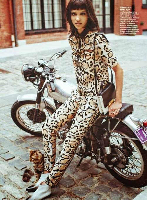 Image via We Heart It #alluremagazine #animalprint #catwoman #fashion #sebastiankim #estampadodeanimal #coraenmanuel