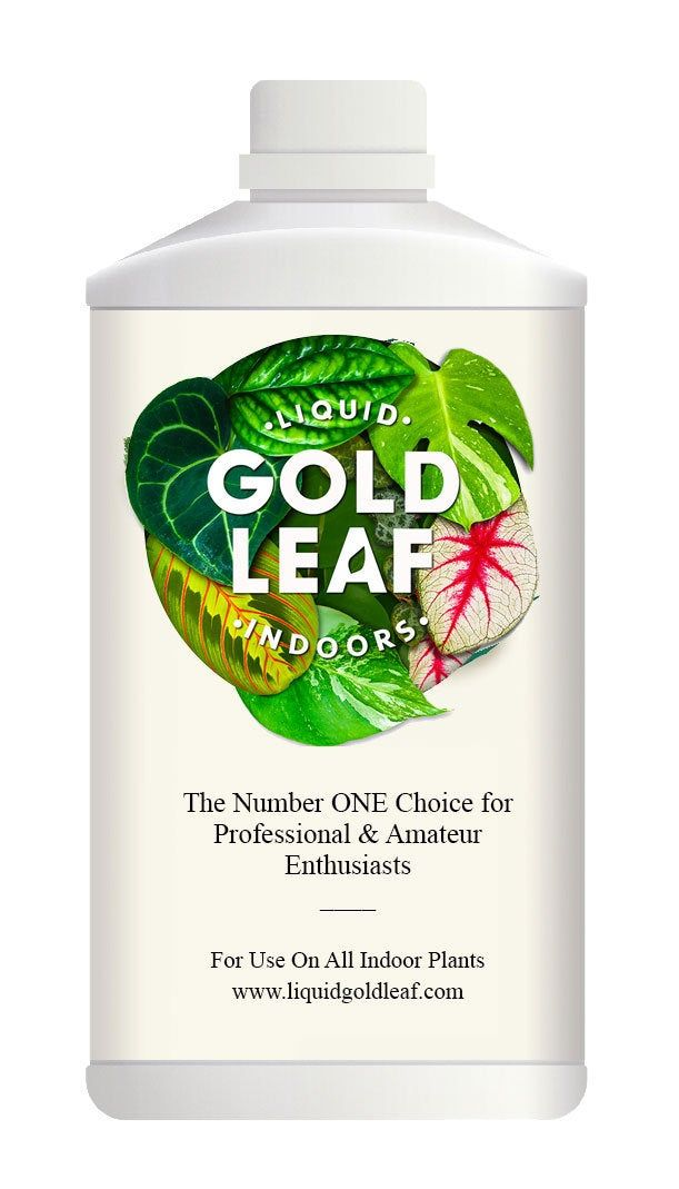 Liquid Gold Leaf Indoor Plant Feed 500ml In 2020 With Images Liquid Gold Leaf Indoor Plants Fertilizer For Plants