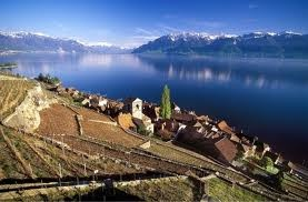 Saint-Saphorin is a municipality in the Swiss canton of Vaud, located in the district of Lavaux-Oron.