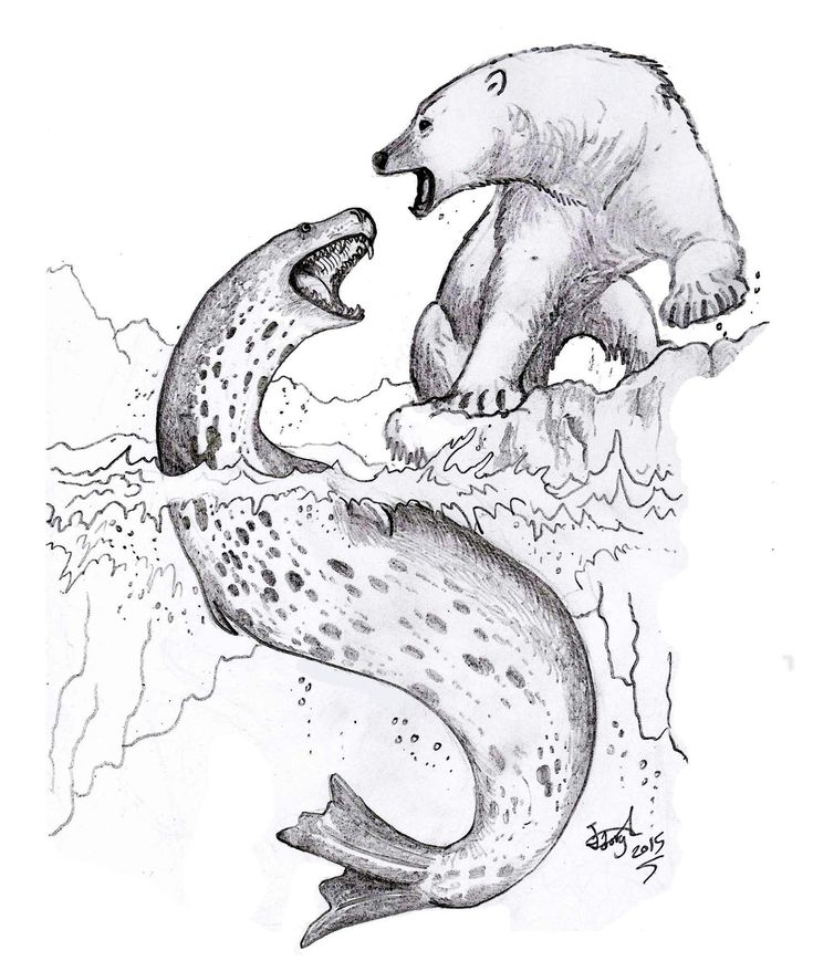 Legends Of Water Of Inuit People 55