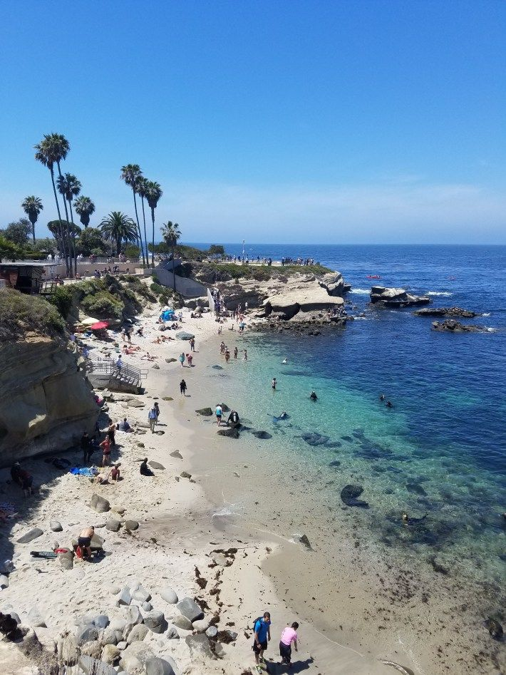 San Go Beaches La Jolla Cove