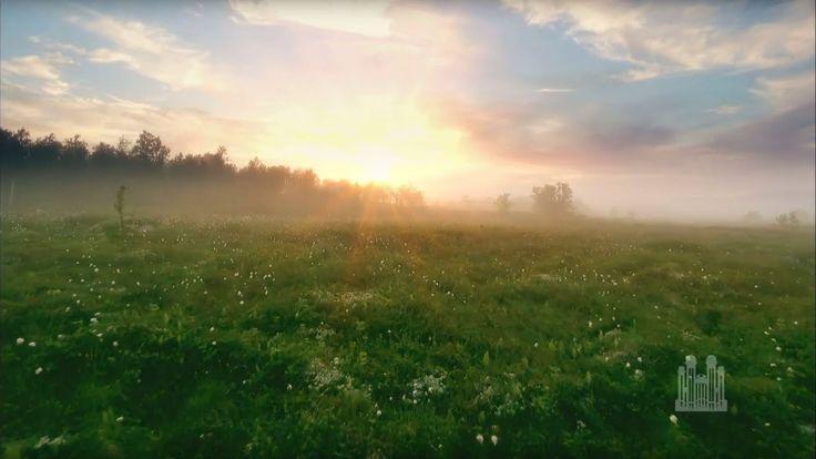 Volver la cara al sol - Palabras de Inspiración