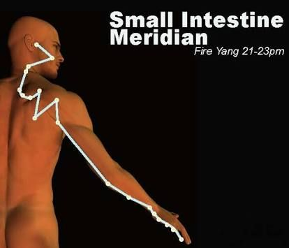 Image result for meridianul stomacului