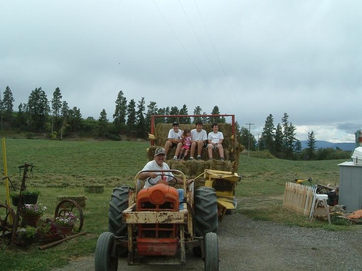 20050904 - Last hay crop of the year at McMillan Farms
