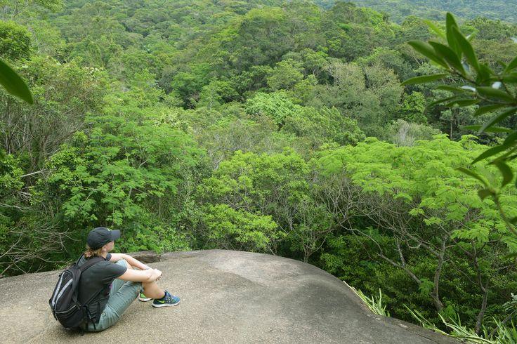 Ilha Grande Brasilia sademetsä.  Saari näytti ihan yhtä kauniilta kuin ennenkin – korkeine kukkuloineen ja niitä peittävine, huikean vehreine trooppisine metsineen ja värikkäine kukkineen.  http://www.exploras.net/matkablogi/14112015