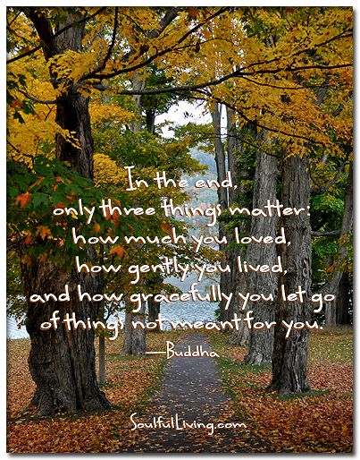 """In the end, only three things matter: how much you loved, how gently you lived, and how gracefully you let go of things not meant for you."" ―Buddha http://www.soulfulliving.com"