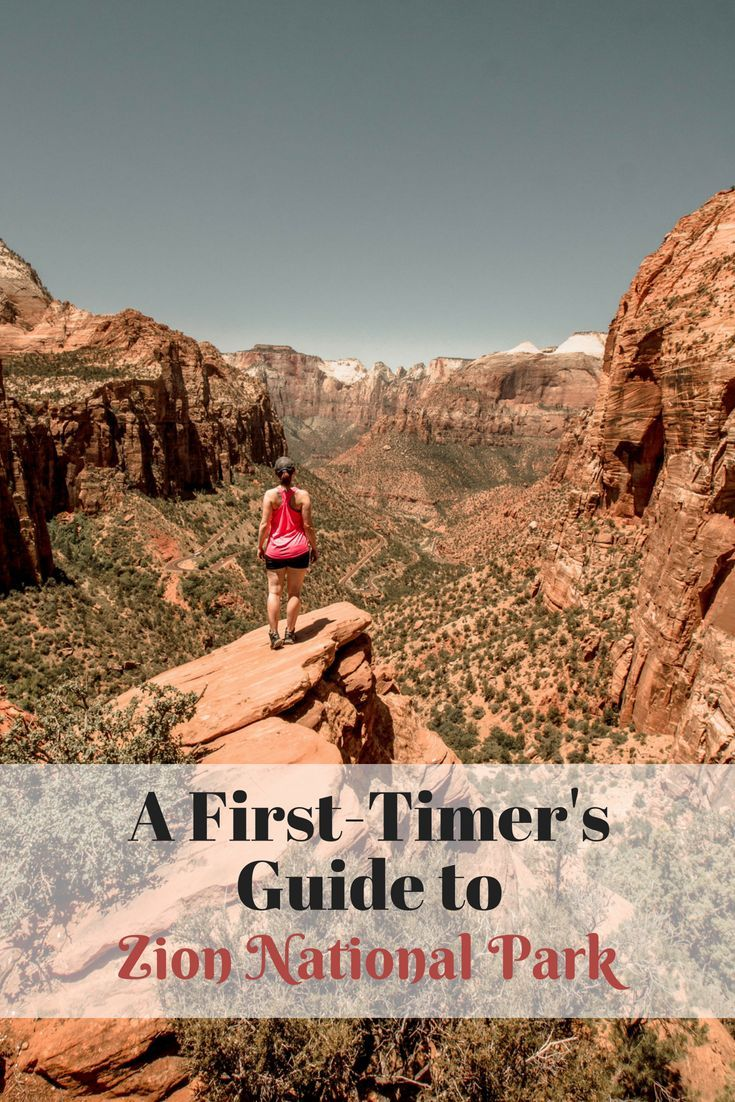 A First Timer S Guide To Zion National Park The Awkward Tourist National Parks Zion National Park Zion National Park Hikes