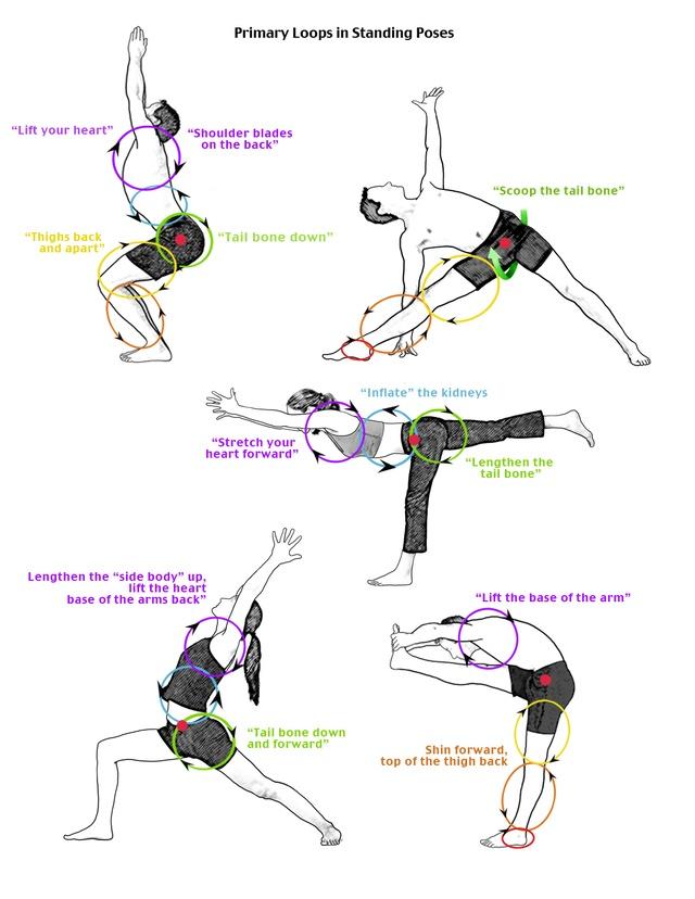 Hatha Yoga The 57 Best Anatomy Images On Pinterest
