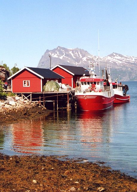 Scandinavia: Norway Travel, Red, Trips, Norway Loves, Visit, Jetty, Places, Kilboghamn