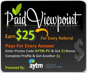 what Is PaidViewPoint
