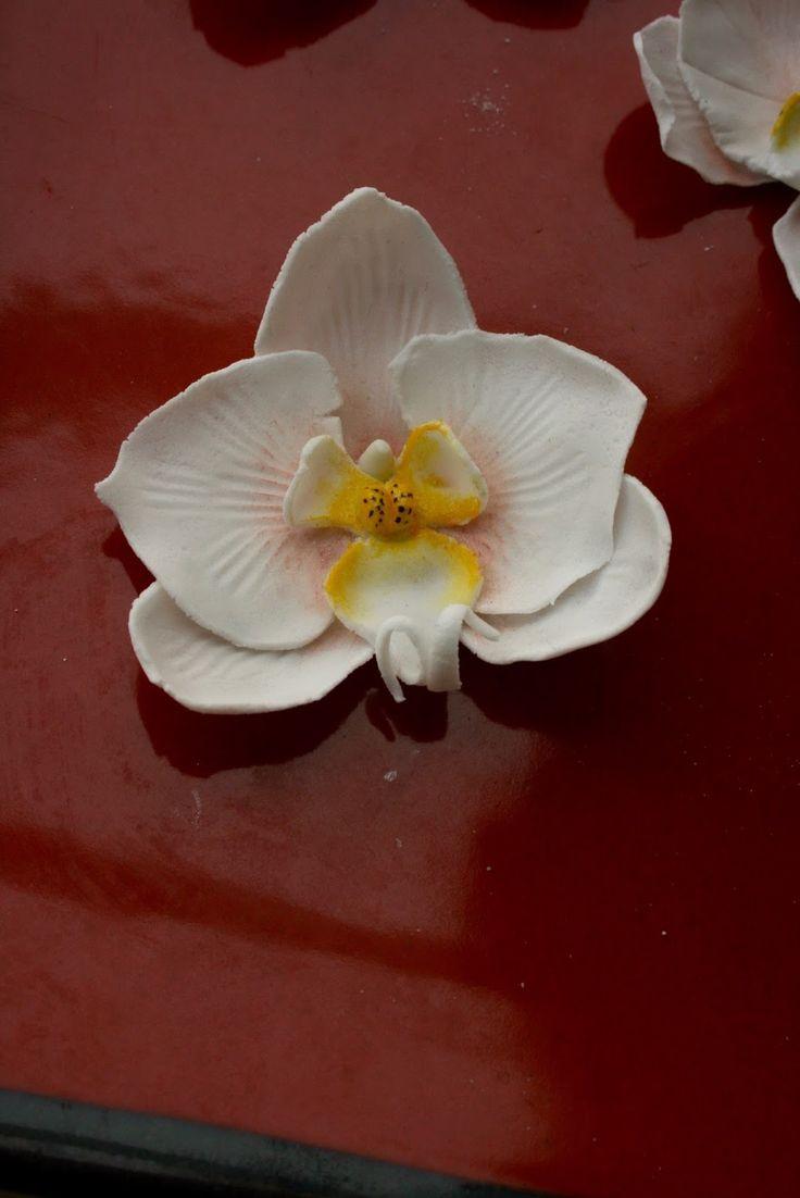 Orchidée en pâte à sucre, Tuto phalaenopsis blanche.