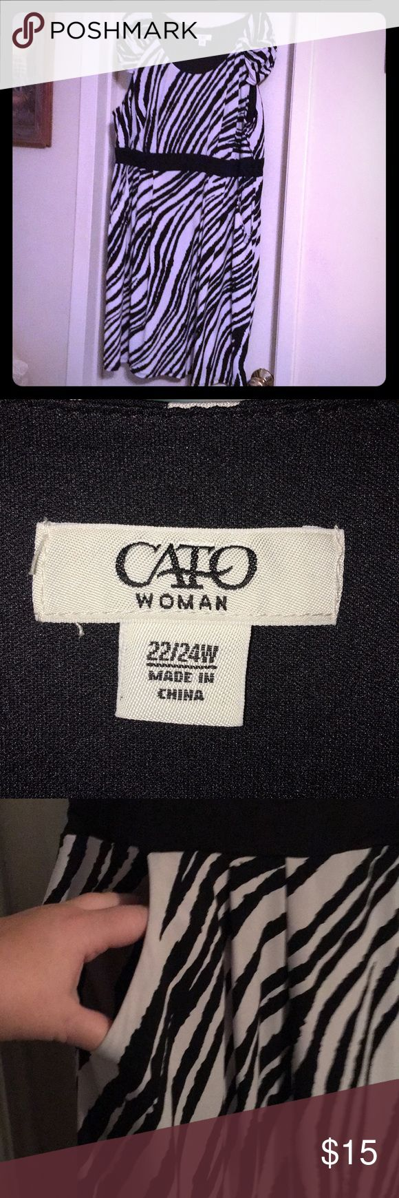 Cato 22/24w above the knee zebra print dress Cato 22/24w above the knee zebra print dress with pockets.  I wore it as a maternity dress. Cato Dresses Midi