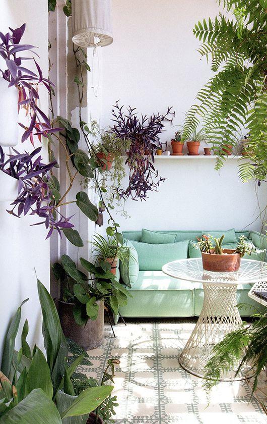 Fraîcheur d'une jungle intérieure et d'un canapé vert menthe / sfgirlbybay