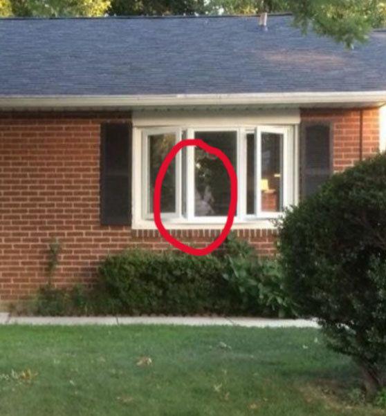 El nuevo compañero de cuarto: | 18 Fotos de fantasmas que te aterrorizarán
