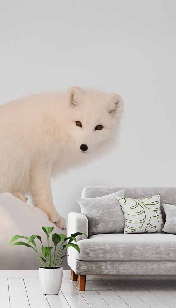 Arctic Fox on Top of a Large Chunk of Ice Wall murals