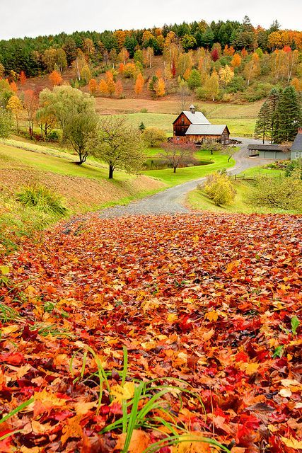 Sleepy Hollow Farm, Vermont, New England, United States.: