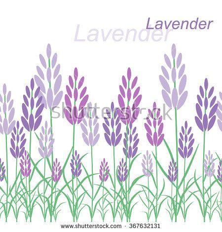 Vector postcard. Lavender, flowers, herbs