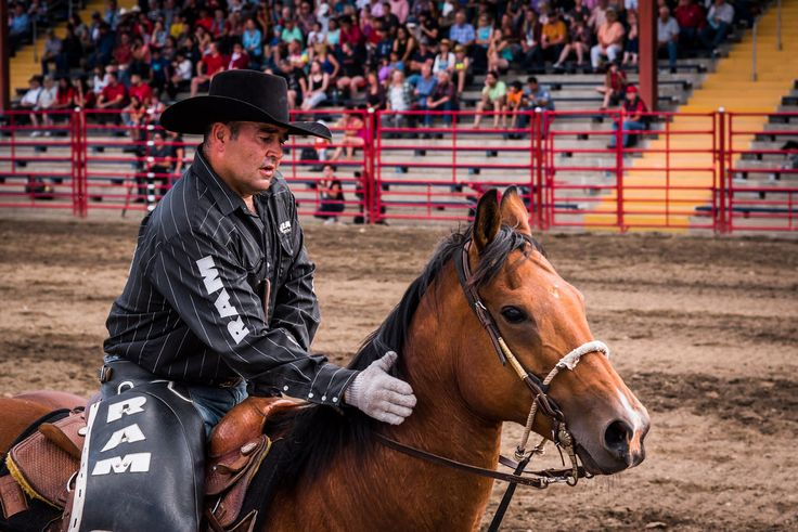 Amy Mitchell Horse and Rider  A quiet moment between events, at the 90th Williams Lake Stampede.    Full album www.flickr.com/photos/akmitchell/albums/72157669458078680