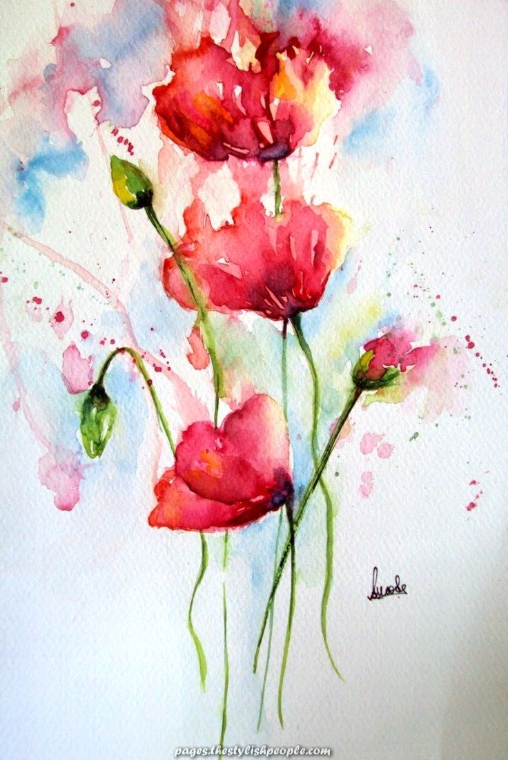 Magical Poppy Poppies Flowers Floral Watercolor Watercolour