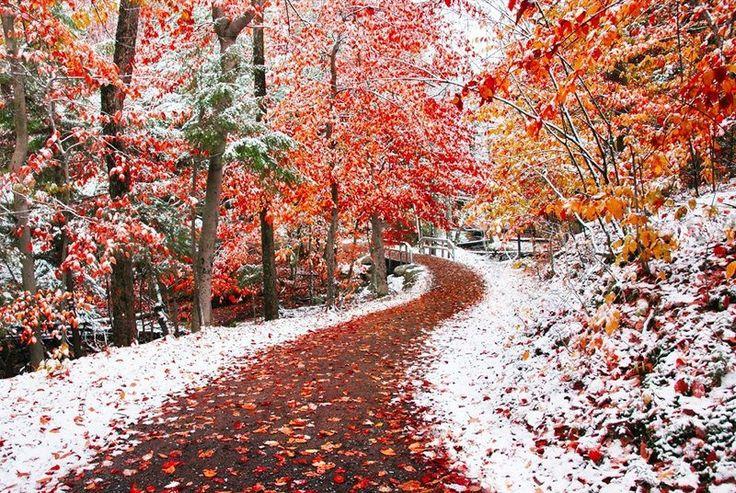 Осень изима слились воедино