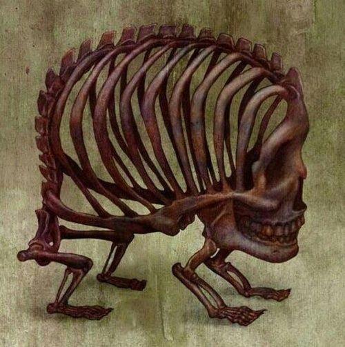 346 Best Horror Gore Guts Images On Pinterest: 14 Best Kuru Kafa Images On Pinterest
