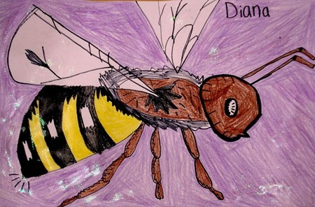 Honeybees-Kansas Day