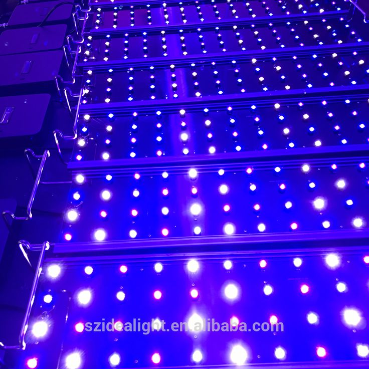 Check out this product on Alibaba.com AppEXW aquarium hydroponic systems 120cm 4ft  sc 1 st  Pinterest : lps lighting - azcodes.com