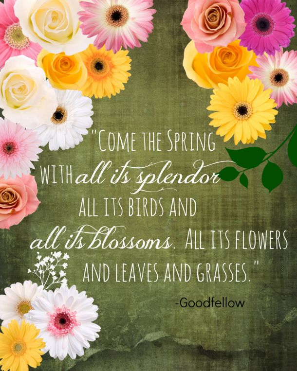 quotes to live by 100 Quotes To Get You Ready For Spring 1