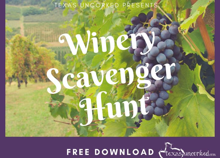 Winery Games – Texas Winery Scavenger Hunt!    Texas Wineries, Bachelorette Party Games, Fun things to do at a winery, Free printable download, Fun games for adults, Winery cool things to do