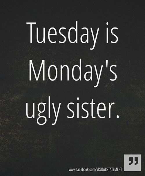 Funny Tuesday Quotes: Best 25+ Monday Tuesday Ideas That You Will Like On