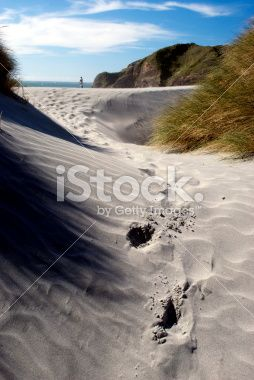 Sand Dunes, Wharariki Beach, Golden Bay, New Zealand Royalty Free Stock Photo