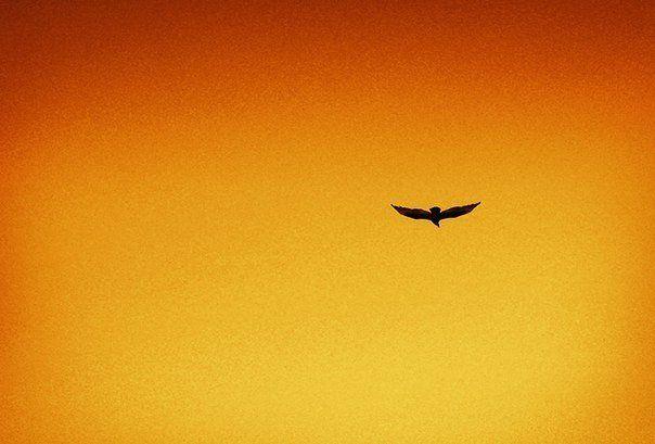 10 вещей, от которых вам нужно отказаться, чтобы двигаться вперед