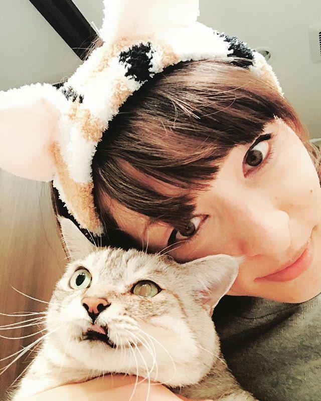 バニラに扮しておやすみなさい🌙💭 (忘年会の出し物の練習ではない) ・ ・ ・ #バニラ #オレオ  #猫 #愛猫 #猫好き #ねこすたぐらむ  #にゃんすたぐらむ #ねこラブ #にゃんこ  #にゃんこ部  #vanilla #oreo #mycat #lovelycat  #catlover #cat  #catlover #catsofinstagram #catstagram #instacats #🐈 #😻 #💗
