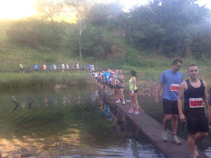 Puma trail run Jan 2015