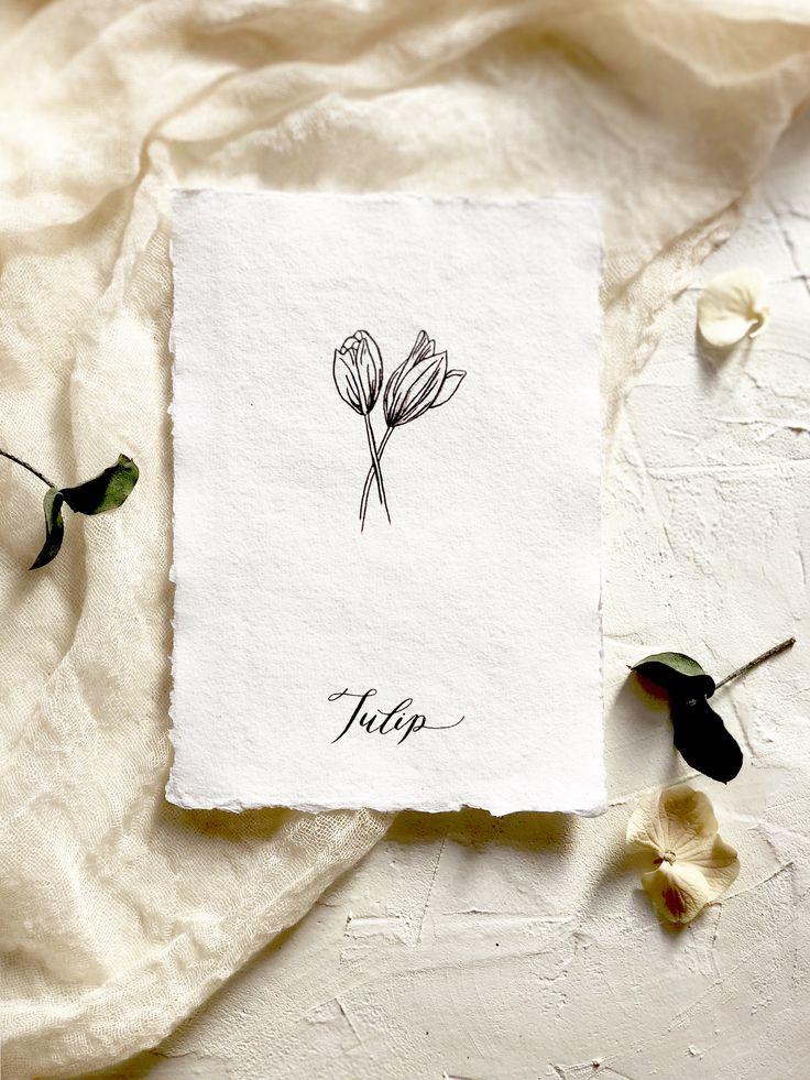 Botanical illustration print. Modern florals. The tulip- flower of abundance.