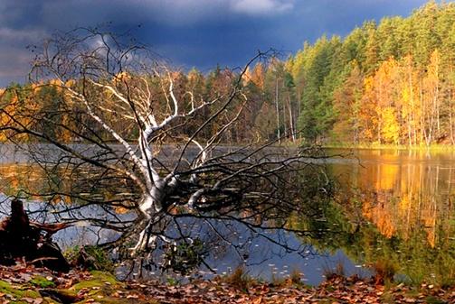 Nuuksio National Park near Helsinki