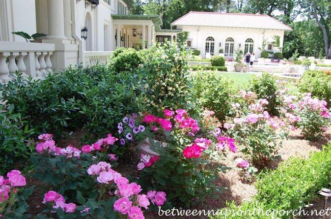 Atlanta Botanical Gardens | Garden-Tour-of-Arthur-Blanks-Garden-Atlanta-Botanical-Gardens-Gardens ...