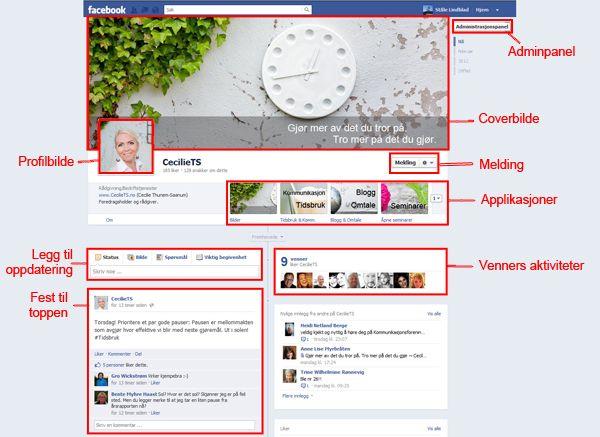 """CecilieTS.no er """"dummy"""": Ståle Lindblad har laget sidene, og forklarer nye Facebook Timeline for bedrifter."""