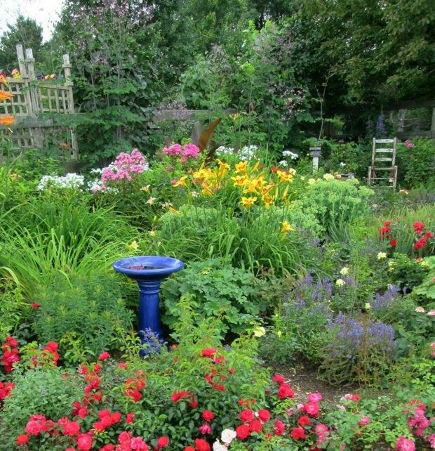 28 Best Our New Garden Ideas Images On Pinterest