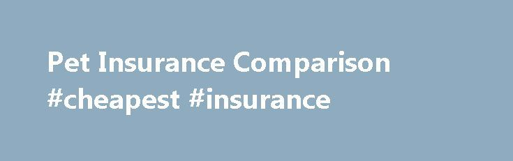 Pet Insurance Comparison #cheapest #insurance http://insurance.nef2.com/pet-insurance-comparison-cheapest-insurance/  #pet insurance compare # Compare Pet Insurance Pet Insurance Policy Types Explained Annual policy Fixed amount per condition Condition no longer covered once limit is reached or 12 months from the onset of the condition Cannot claim for the same... Read more