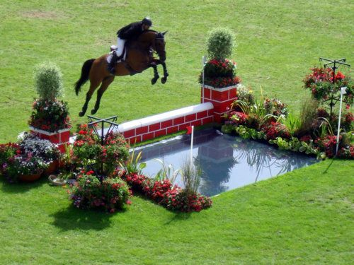 35 Best Images About Show Jumping On Pinterest World
